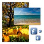 ¿Te vas de vacaciones? ¡No lo cuentes en Facebook!
