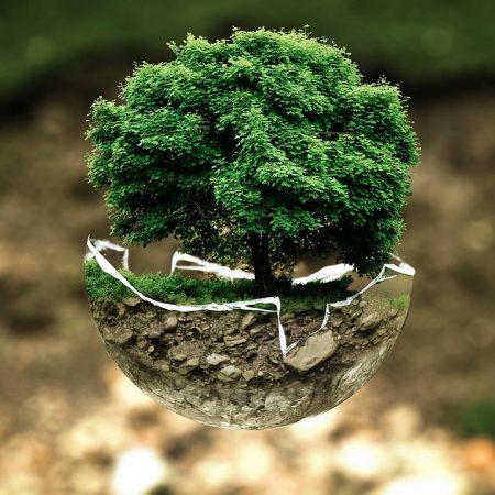 Seguros de Riesgos Medioambientales
