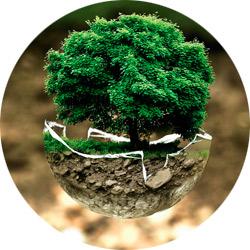 Seguros-de-Riesgos-Medioambientales